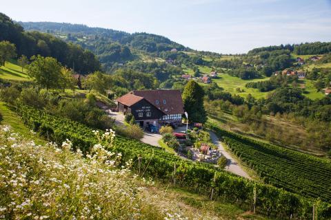 Schlafen im Weinfass | Sasbachwalden