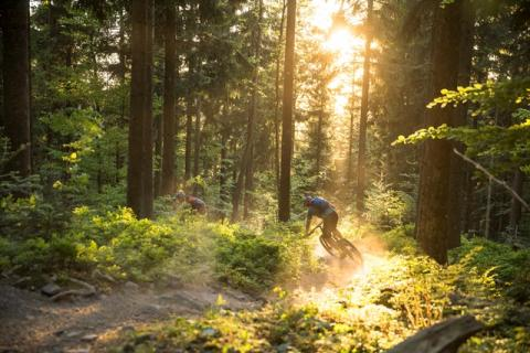 world_of_mtb_Sasbachwalden_2018_25_WEB