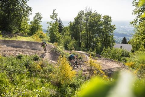 world_of_mtb_Sasbachwalden_2018_8_WEB