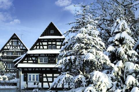 winter-sasbachwalden